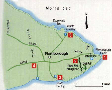 Flamborough Head Map Flamborough Head Map